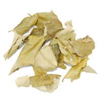 Kaffir Limettenblätter