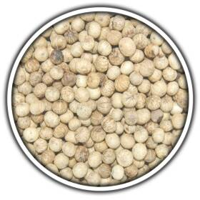 Weißer Kampot Pfeffer 500 Gramm